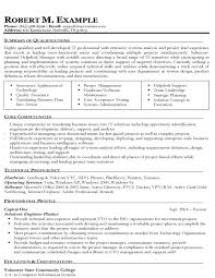 it solutions engineering targeted resume examples