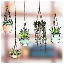 Stickers4 - 5 Illustrated Hanging Plant Window Stickers - Hanging ...