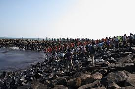 the great chennai oil spill clean up the diplomat the great chennai oil spill clean up
