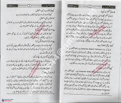my computer essay in urdu essay on my favourite toy in urdu speedy paper mobilepark hockey career of wayne gretzky at
