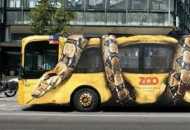 Image result for bus wraps advertising