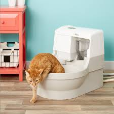 <b>Best automatic</b> litter boxes for 2019, based on customer reviews