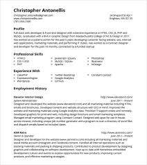 programmer resume template     download documents in pdf   psd   wordphp developer resume pdf