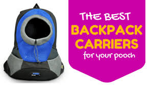 9 Best <b>Dog Backpack Carriers</b> [2019 Reviews]: <b>Pack</b> Pups On Your ...