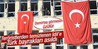 Teröristlerin kullandığı binalara Türk bayrağı asıldı