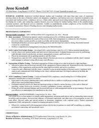 entry level internal auditor resume sample bank internal auditor resume sample auditor resumes internal auditors job description