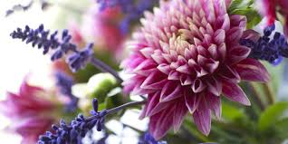 Image result for fresh flower