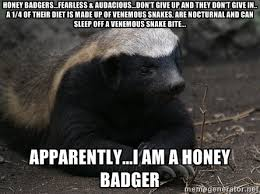 Honey Badgers...fearless & audacious...don't give up and they don ... via Relatably.com