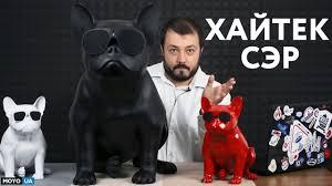 Собака для хайтек-сэра - обзор AEROBULL XS1 и HD - YouTube