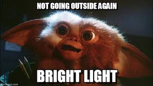 Not Going Outside Again - Gizmo meme on Memegen via Relatably.com