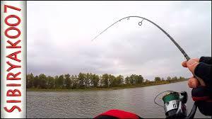 Вот это Рыбина! Тут таких не было! .. Рыбалка осенью на малой ...