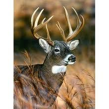 Buy 5d <b>diamond painting full</b> drill <b>round</b> deer and get free shipping ...