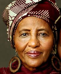 Image result for Hawa Abdi Dhiblawe