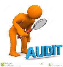 Hasil gambar untuk internal audit hospitals