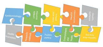 Research   UW School of Public Health American Public Health Association Paper methods of qualitative analysis