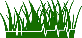 lawn care logo ideas image information this