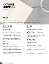 executive resume examples to follow resume examples  best executive resume examples executive resume example onine