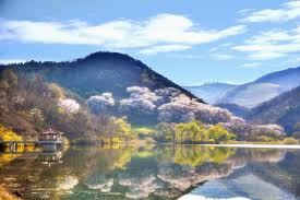 10 things <b>I love</b> about <b>Korea</b>. And why you will too. | by Chengeer ...