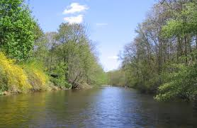 Image result for river picture