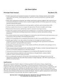 graduate student cover letter structure      job description principal data analyst