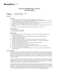 sales manager typical job description   singlepageresume com    telecom sales manager job description channel  s manager job description