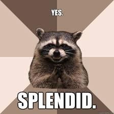 Yes. SPlendid. - Evil Plotting Raccoon - quickmeme via Relatably.com