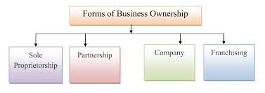 forms of business ownership simplynotes busines ownership 001