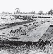 Органические вещества и археологический материал ...