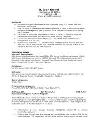 programmer analyst resumes  template programmer analyst resumes