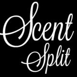 <b>Sailing</b> Day Sample & Decants by <b>Maison Martin Margiela</b> | Scent Split