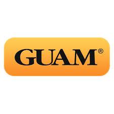 <b>Моделирующая</b> одежда / Косметика Guam (Гуам), Италия ...