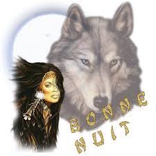 """Résultat de recherche d'images pour """"gif bonne nuit loup"""""""