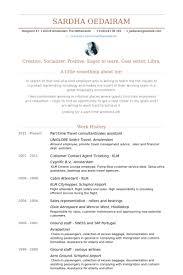 part time travel consultantsales assistant resume samples junior travel consultant resume