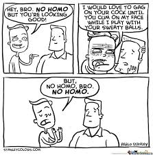 No Homo, Bro. by pablostanley - Meme Center via Relatably.com