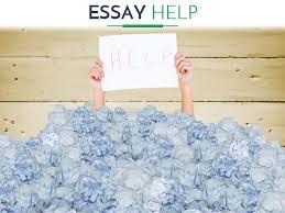 best essay help from paperswritingsnet
