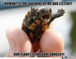 Ninja Turtles Memes. Best Collection of Funny Ninja Turtles Pictures via Relatably.com