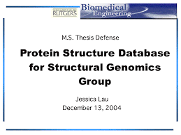 PowerPoint Presentation   MS Thesis Summary  Protein Structure     Rutgers University