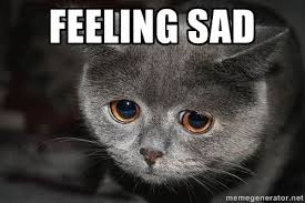 FEELING SAD - Sadcat | Meme Generator via Relatably.com