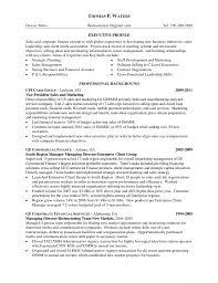 marketing s and marketing resume inspiration s and marketing resume