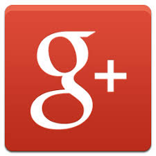 Image result for google + icons