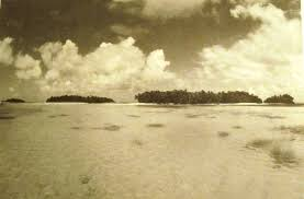 witnesses amelia earhart the truth at last this is the shallow reef area near barre island that vincent v loomis presents in