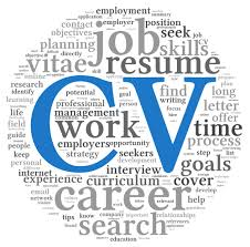 professional cv builder easy build a professional cv on line for