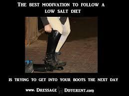 funny | Dressage Different via Relatably.com