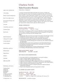 Example Executive Resume  free blank resume template sample  cfo
