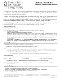 doc student resume example thebalance high school now