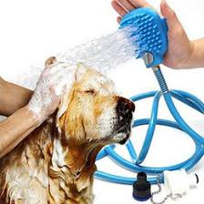 Clippers Pets NZ | Buy New Clippers Pets Online from Best Sellers ...