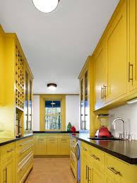 Water Resistant Kitchen Cabinets Replacement Kitchen Cabinet Doors Pictures Options Tips Ideas