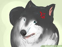 How to Approach a Stray <b>Dog</b>: 11 Steps (with Pictures) - wikiHow