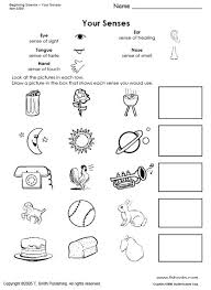 Beginning Science Unit about Your Five SensesBeginning Science Worksheets about the Five Senses