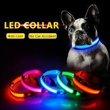 <b>USB Charging Led</b> Dog Collar - Business, Life, and Coffee Podcast ...
